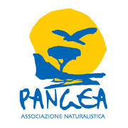 associazione Pangea